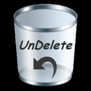 Undelete_Grey_480